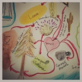 beyond gratitude: mind mapping, sense memory & poweroutages